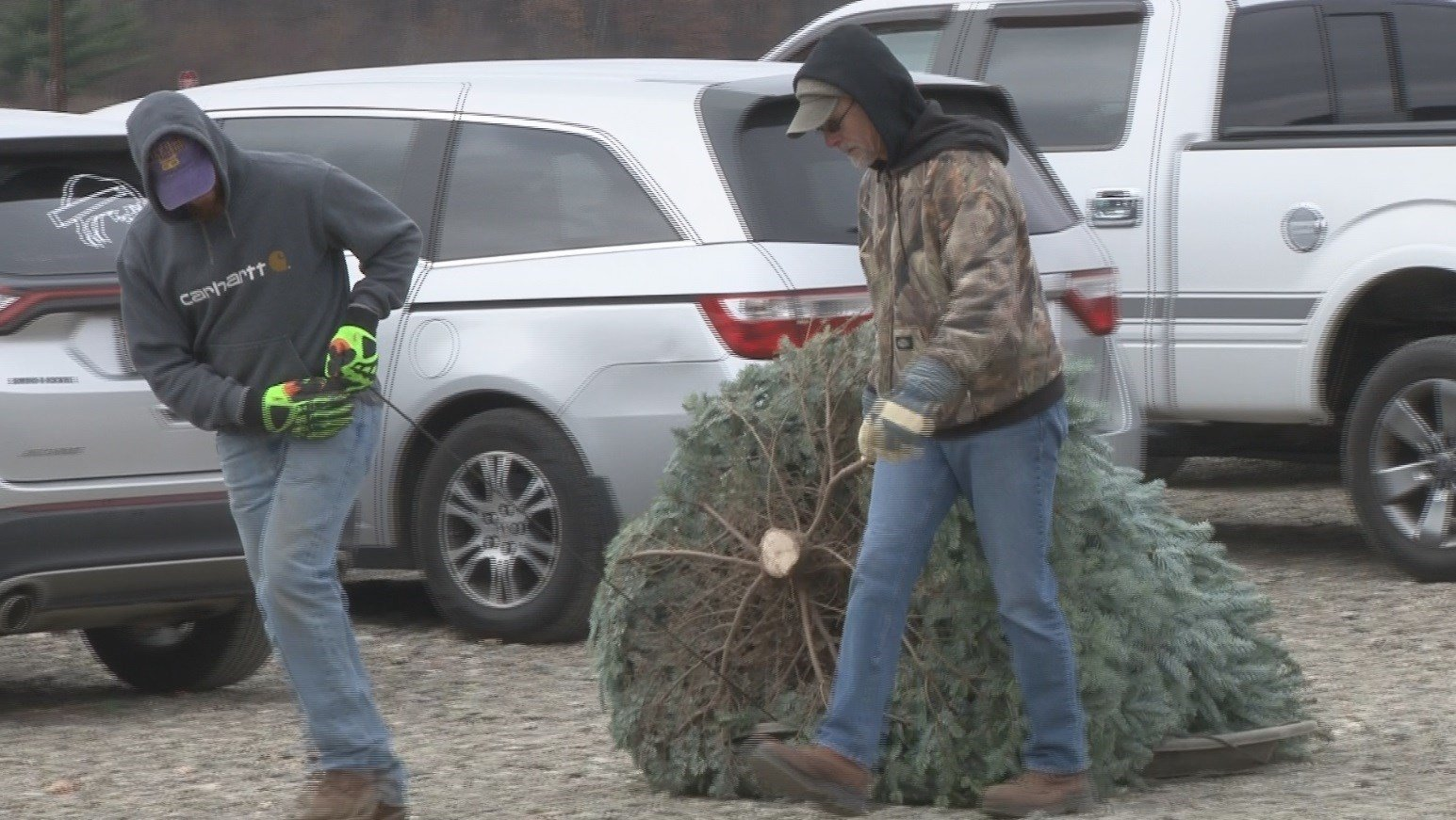 Eau Claire family seeks out the flawless  Christmas tree