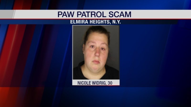 Weny News Elmira Woman Arrested For Scam Paw Patrol Event