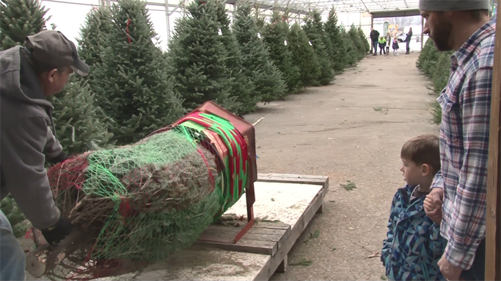 Weny News Bradley Farms Ready For Holiday Rush